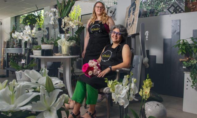 Opalys fleurs